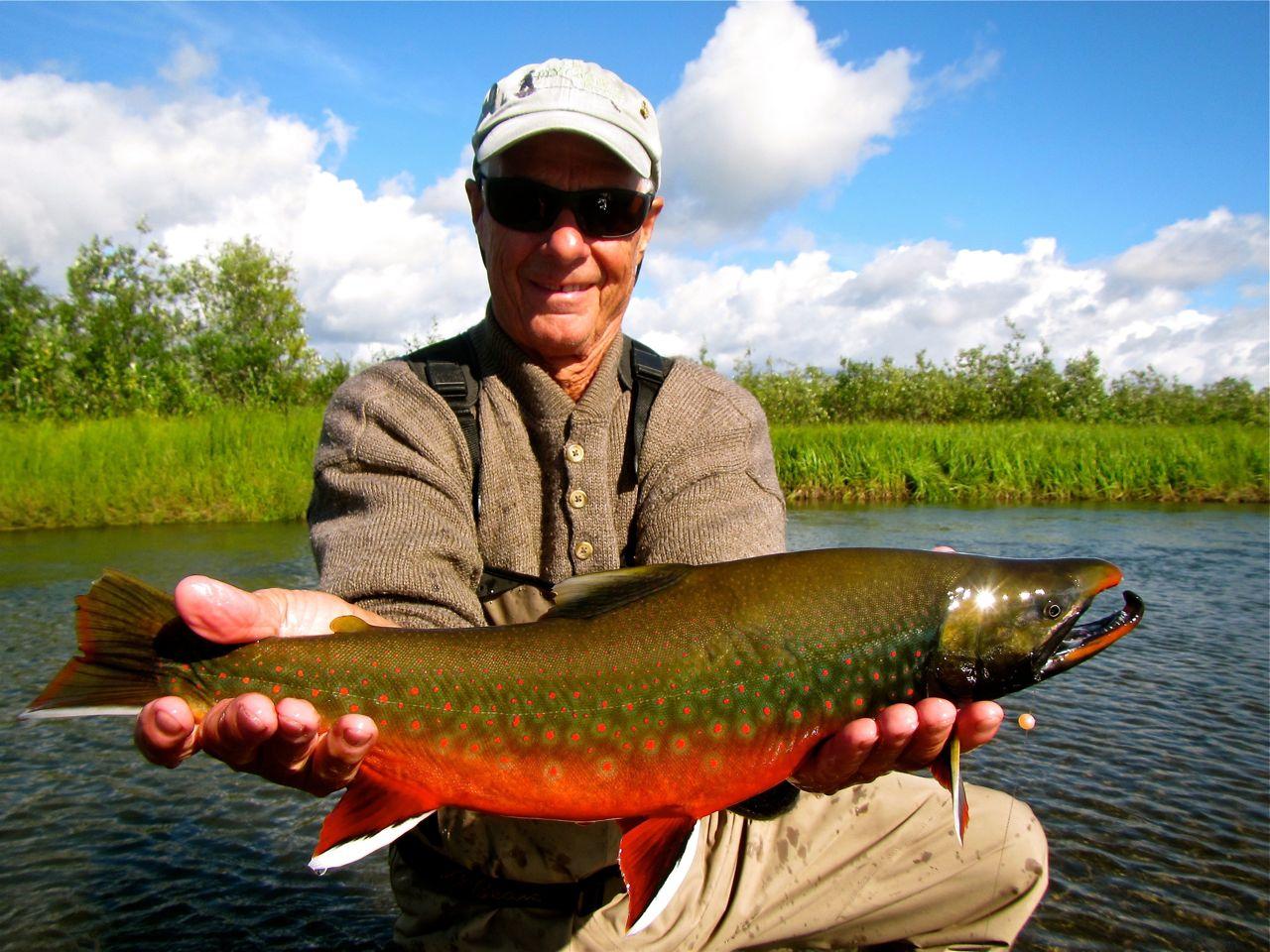 Dolly varden alaska fly fishing lodge for Dolly varden fish