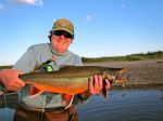Val's nice dolly varden