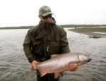 Spey rod caught king on the K-Tok