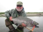 Kanektok river king on pink and orange spey fly